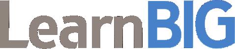 LearnBIG_Logo5 (2)