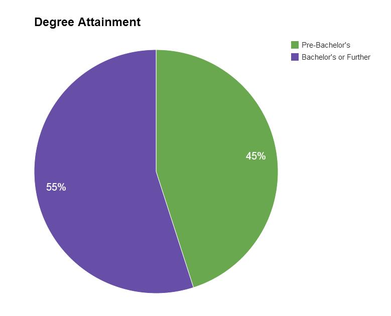 Degree Distribution - Basic